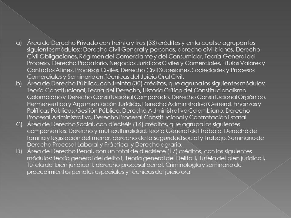Área de Derecho Privado con treinta y tres (33) créditos y en la cual se agrupan los siguientes módulos:: Derecho Civil General y personas, derecho civil bienes, Derecho Civil Obligaciones, Régimen del Comerciante y del Consumidor, Teoría General del Proceso, Derecho Probatorio, Negocios Jurídicos Civiles y Comerciales, Títulos Valores y Contratos Afines, Procesos Civiles, Derecho Civil Sucesiones, Sociedades y Procesos Comerciales y Seminario en Técnicas del Juicio Oral Civil.