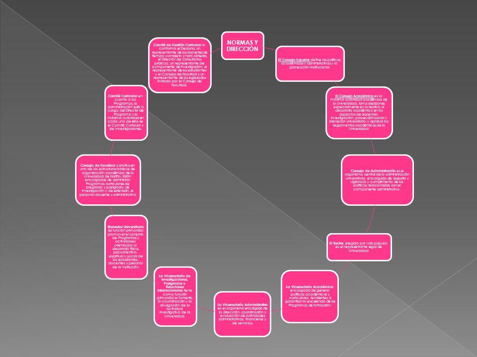 NORMAS Y DIRECCIÓN El Consejo Superior define las políticas académicas y administrativas y la planeación institucional.