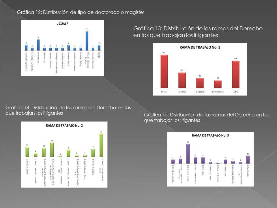 Gráfica 12: Distribución de tipo de doctorado o magister