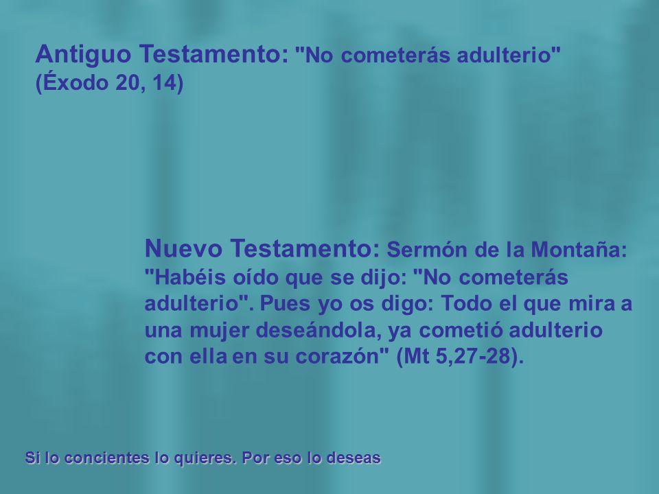 Antiguo Testamento: No cometerás adulterio (Éxodo 20, 14)