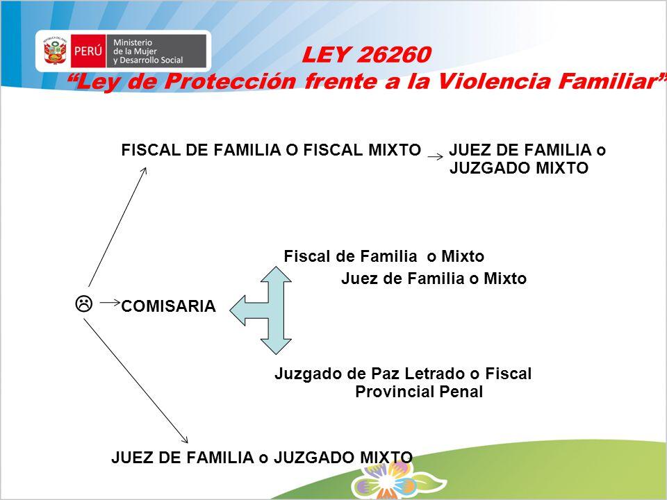 Ley de Protección frente a la Violencia Familiar