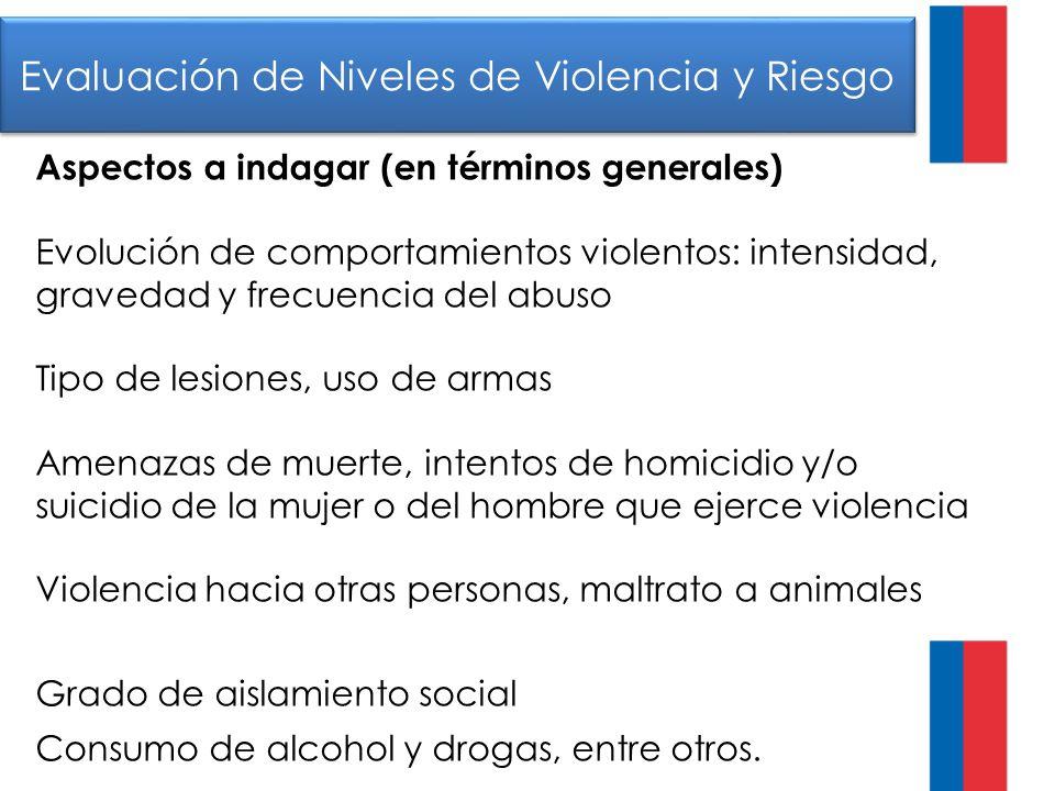 Evaluación de Niveles de Violencia y Riesgo