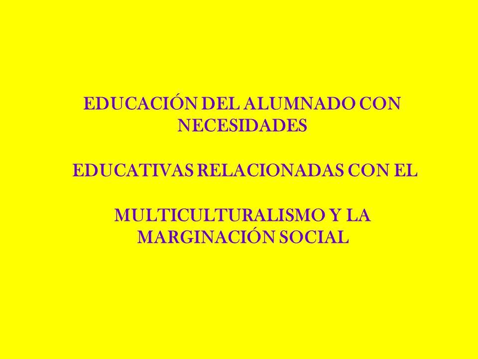 EDUCACIÓN DEL ALUMNADO CON NECESIDADES EDUCATIVAS RELACIONADAS CON EL MULTICULTURALISMO Y LA MARGINACIÓN SOCIAL
