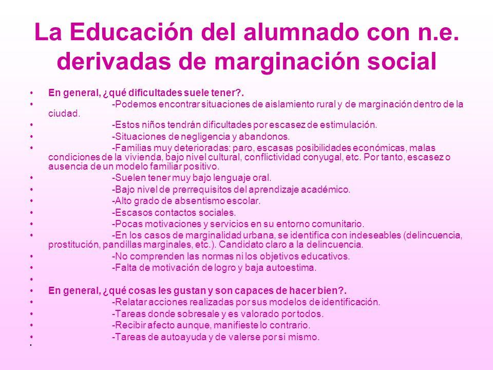La Educación del alumnado con n.e. derivadas de marginación social