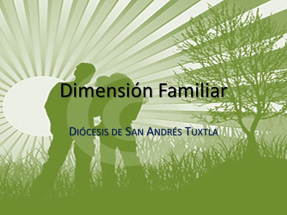 Diócesis de San Andrés Tuxtla