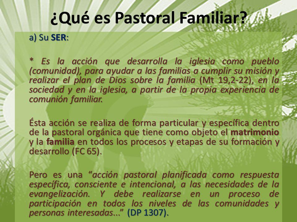 ¿Qué es Pastoral Familiar