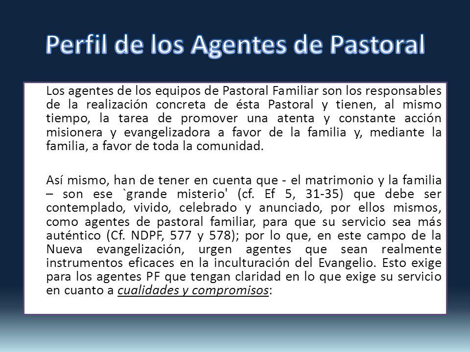 Perfil de los Agentes de Pastoral