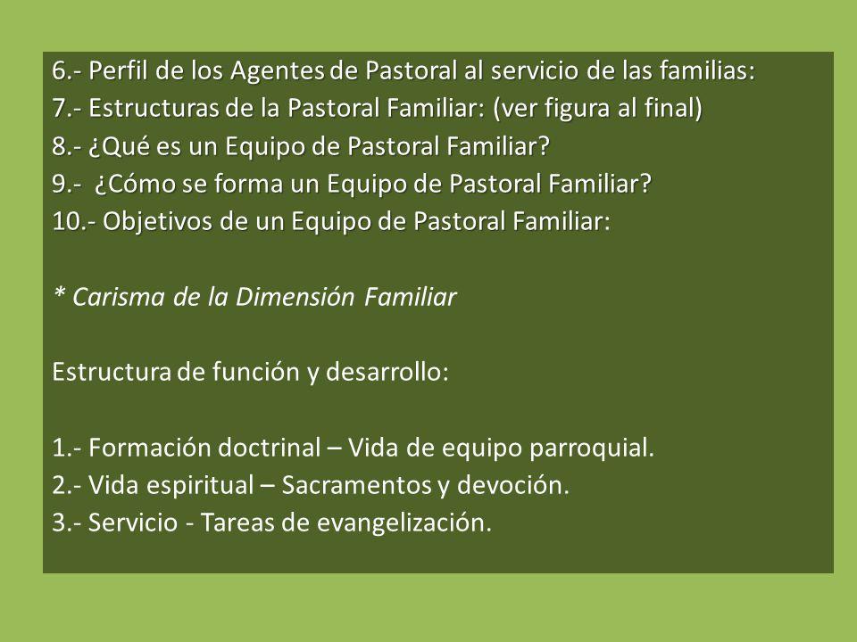 6. - Perfil de los Agentes de Pastoral al servicio de las familias: 7