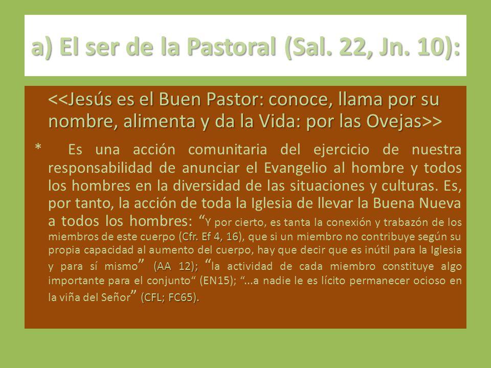 a) El ser de la Pastoral (Sal. 22, Jn. 10):