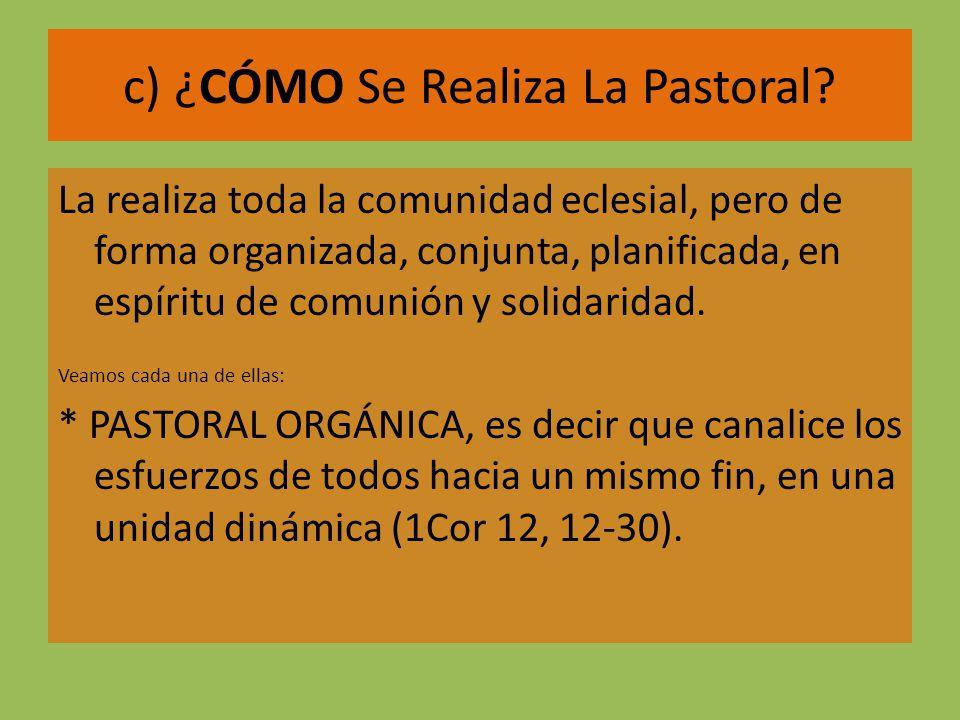c) ¿CÓMO Se Realiza La Pastoral
