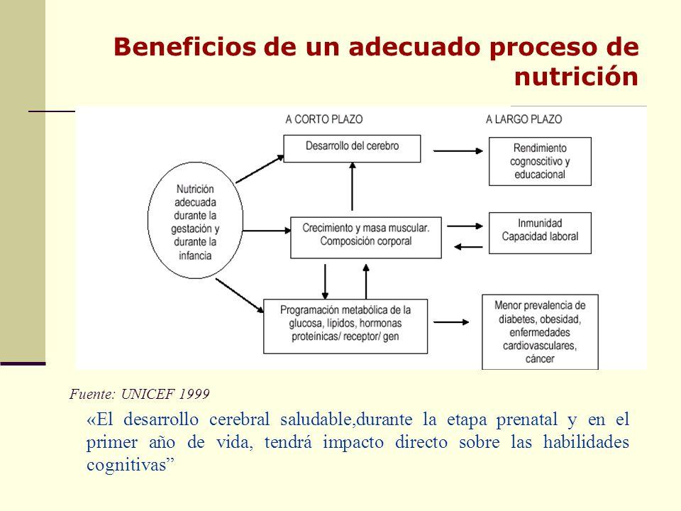 Beneficios de un adecuado proceso de nutrición