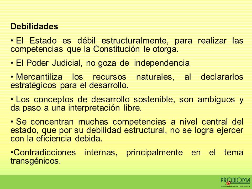Debilidades El Estado es débil estructuralmente, para realizar las competencias que la Constitución le otorga.