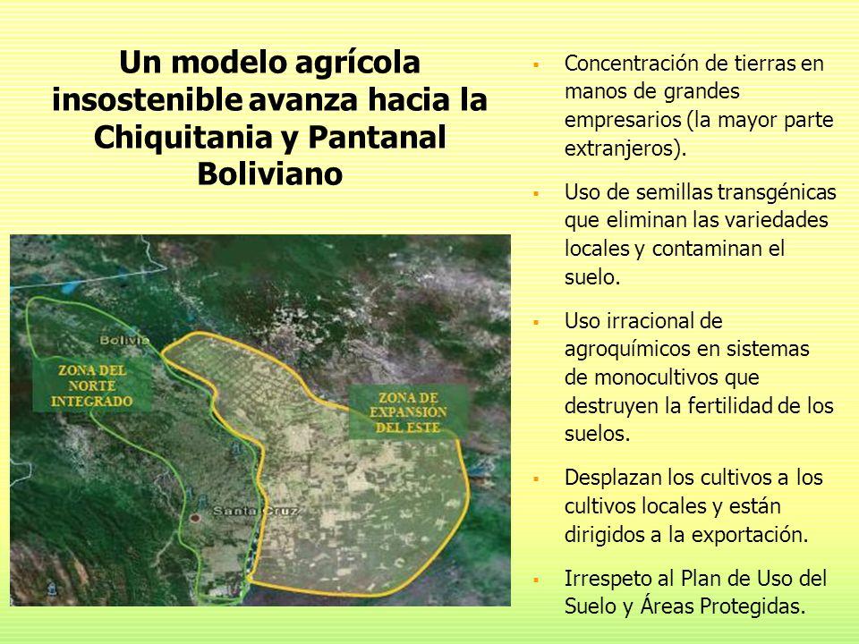 Un modelo agrícola insostenible avanza hacia la Chiquitania y Pantanal Boliviano