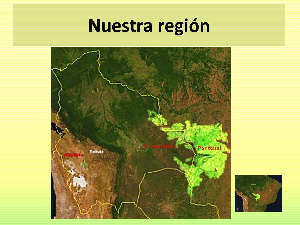 Nuestra región Chiquitania Pantanal