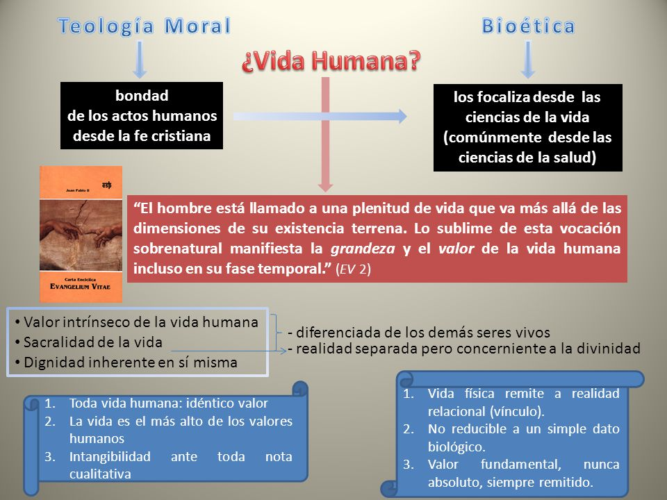 ¿Vida Humana Teología Moral Bioética bondad