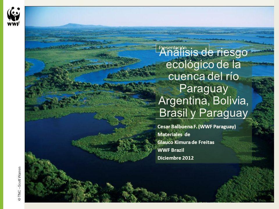 Análisis de riesgo ecológico de la cuenca del río Paraguay