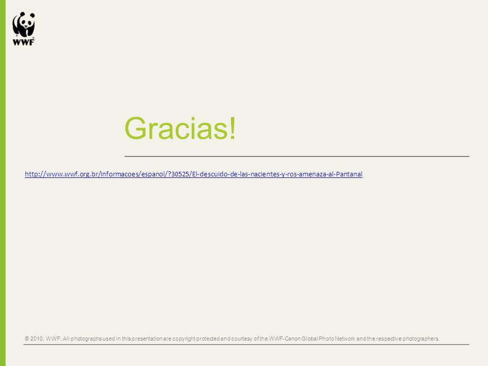 Gracias! http://www.wwf.org.br/informacoes/espanol/ 30525/El-descuido-de-las-nacientes-y-ros-amenaza-al-Pantanal.