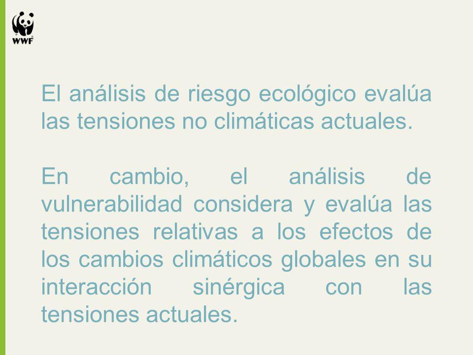 El análisis de riesgo ecológico evalúa las tensiones no climáticas actuales.