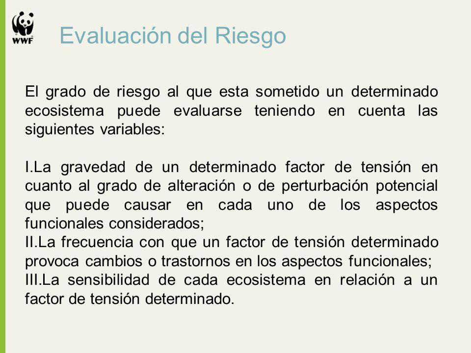 Evaluación del Riesgo El grado de riesgo al que esta sometido un determinado ecosistema puede evaluarse teniendo en cuenta las siguientes variables: