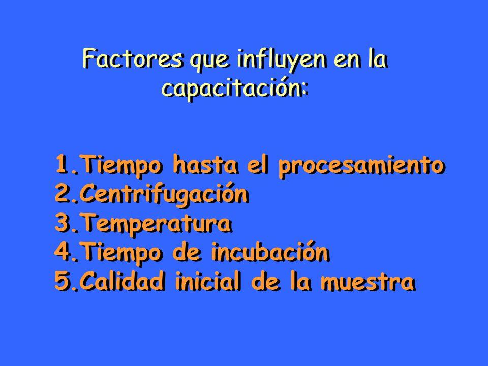 Factores que influyen en la capacitación: