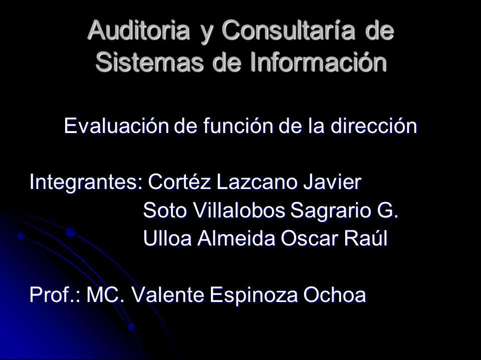 Auditoria y Consultaría de Sistemas de Información