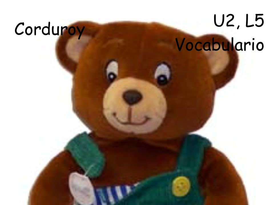 Corduroy U2, L5 Vocabulario