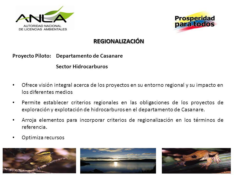 REGIONALIZACIÓN Proyecto Piloto: Departamento de Casanare