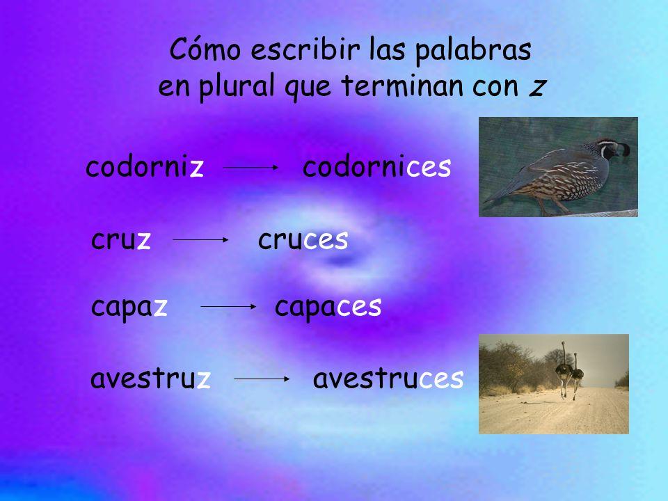 Cómo escribir las palabras en plural que terminan con z