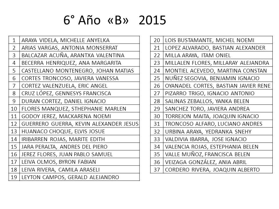 6° Año «B» 2015 1 ARAYA VIDELA, MICHELLE ANYELKA 2