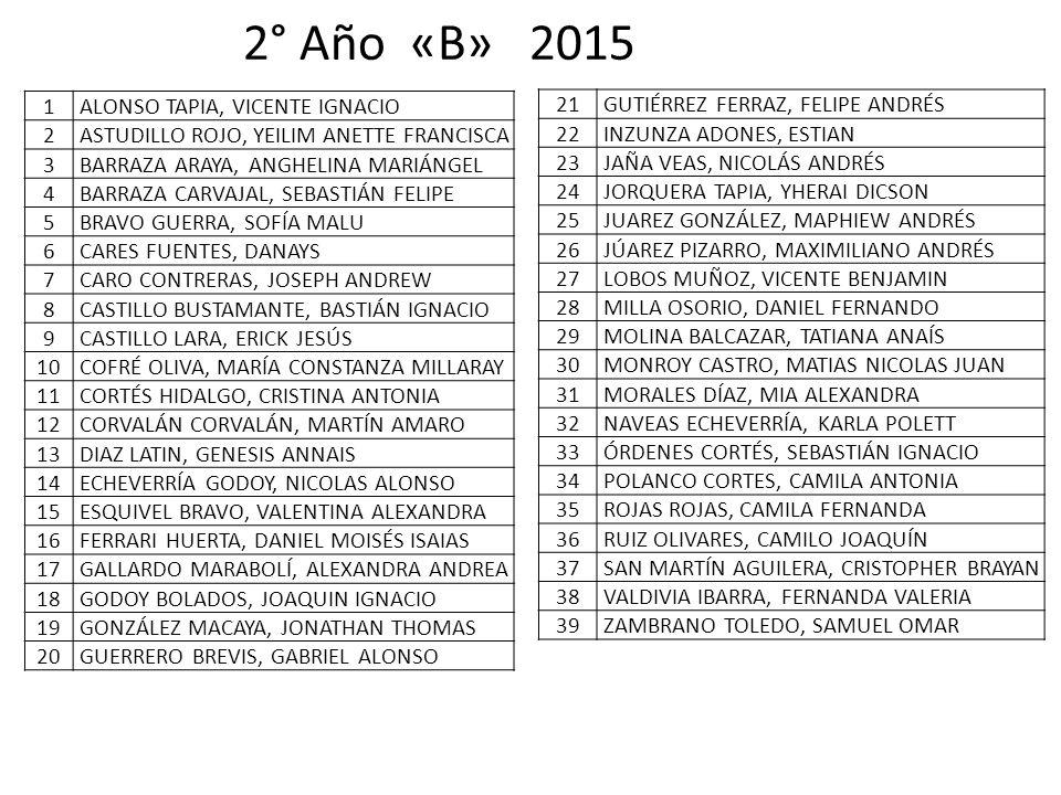 2° Año «B» 2015 1 ALONSO TAPIA, VICENTE IGNACIO 2