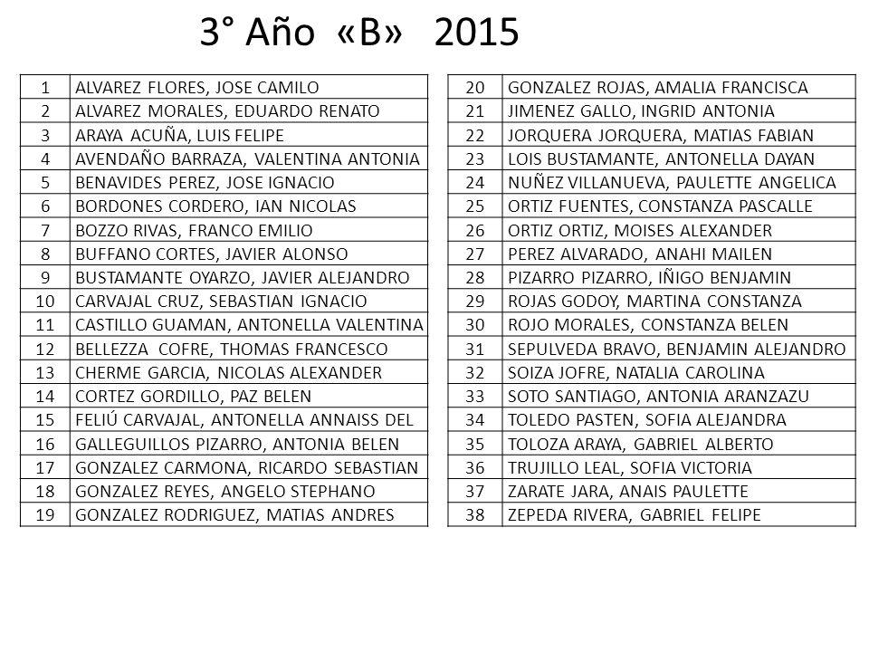 3° Año «B» 2015 1 ALVAREZ FLORES, JOSE CAMILO 2