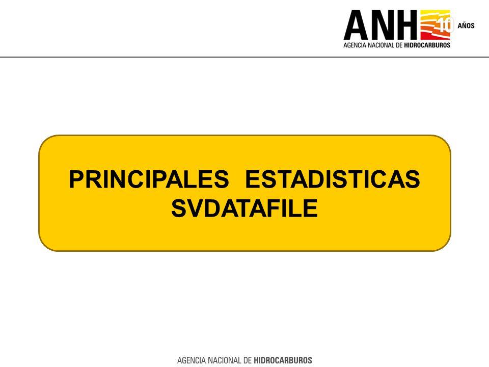 PRINCIPALES ESTADISTICAS SVDATAFILE