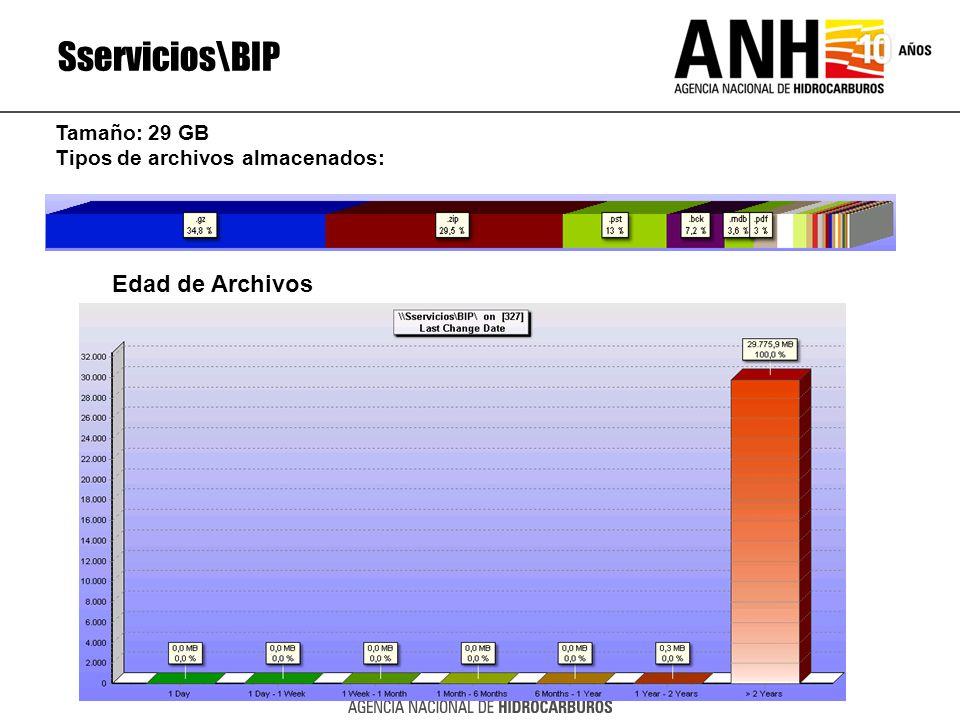 Sservicios\BIP Edad de Archivos Tamaño: 29 GB