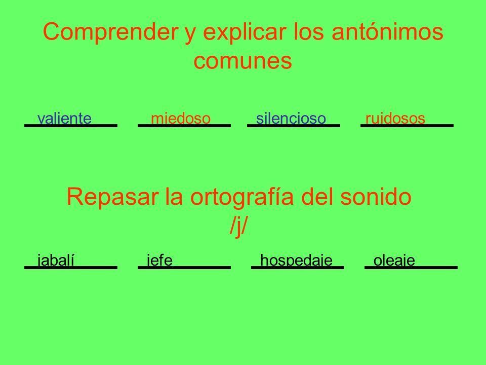 Comprender y explicar los antónimos comunes