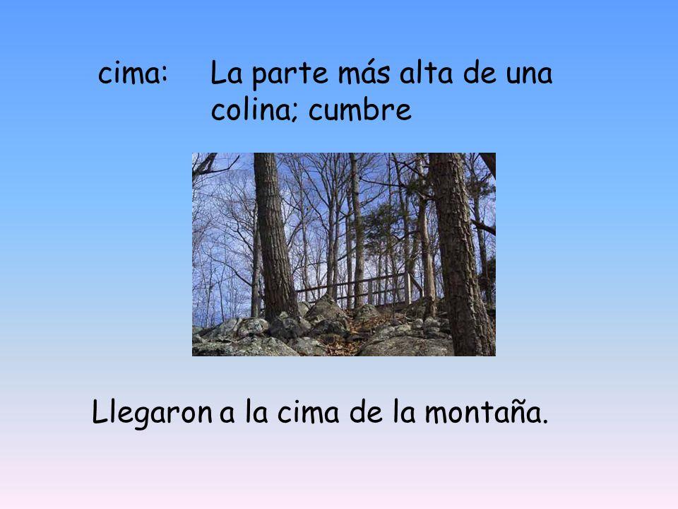 cima: La parte más alta de una colina; cumbre Llegaron a la cima de la montaña.