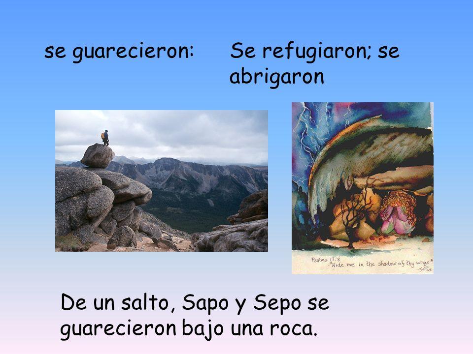 se guarecieron: Se refugiaron; se abrigaron De un salto, Sapo y Sepo se guarecieron bajo una roca.