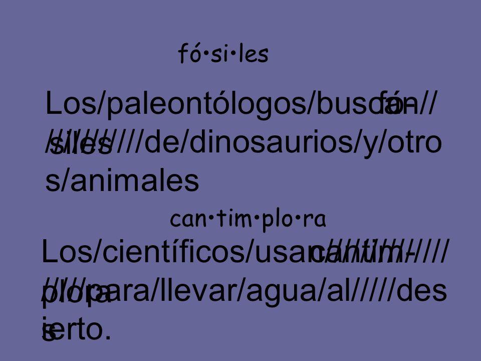 Los/paleontólogos/buscan/////////////de/dinosaurios/y/otros/animales