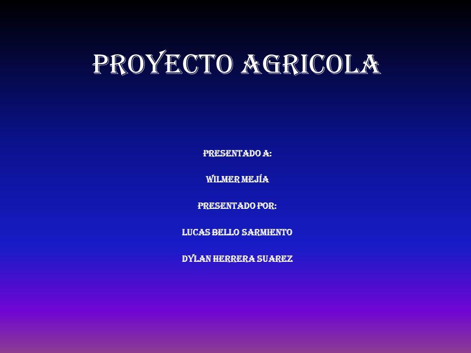 PROYECTO AGRICOLA Presentado a: Wilmer mejía Presentado por:
