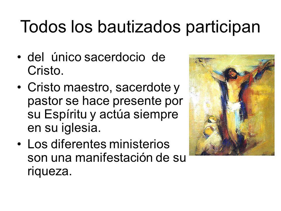 Todos los bautizados participan
