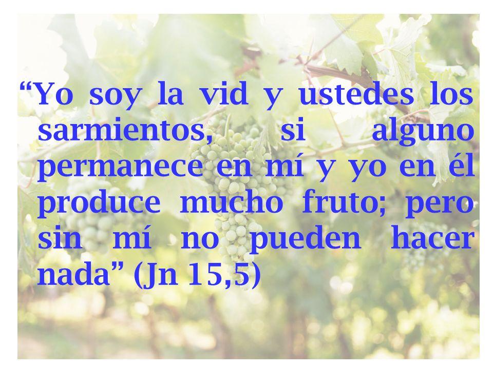 Yo soy la vid y ustedes los sarmientos, si alguno permanece en mí y yo en él produce mucho fruto; pero sin mí no pueden hacer nada (Jn 15,5)