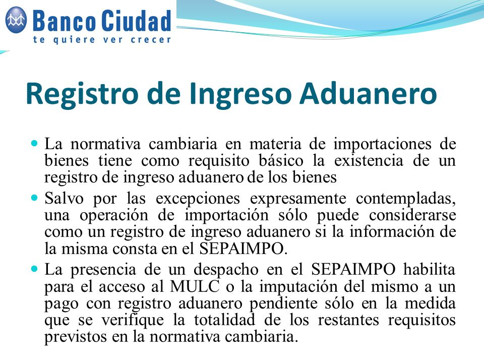 Registro de Ingreso Aduanero