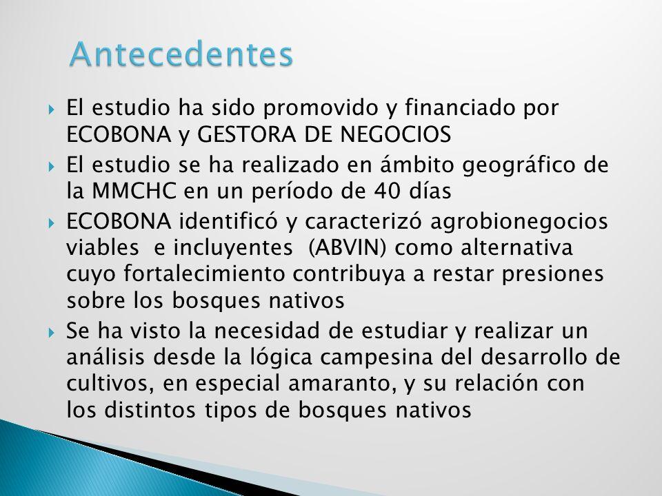 AntecedentesEl estudio ha sido promovido y financiado por ECOBONA y GESTORA DE NEGOCIOS.