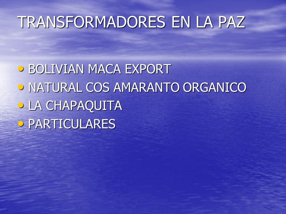 TRANSFORMADORES EN LA PAZ