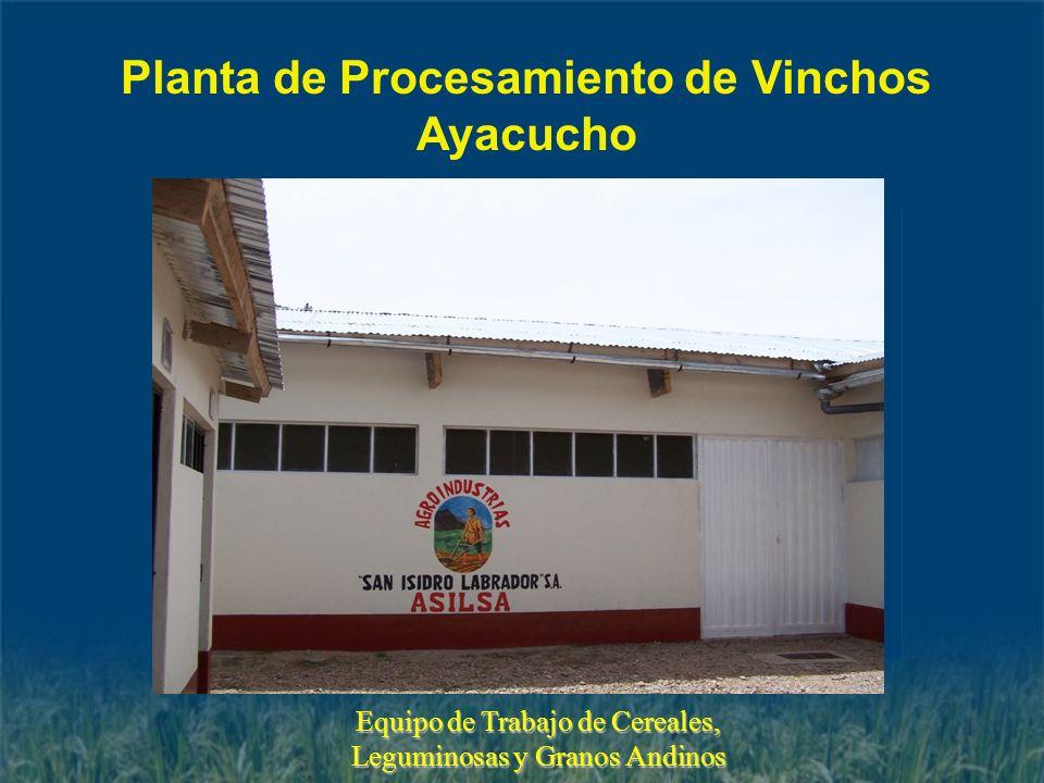 Planta de Procesamiento de Vinchos Ayacucho