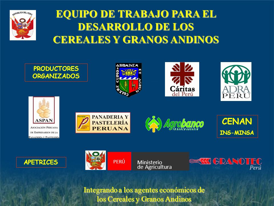 EQUIPO DE TRABAJO PARA EL DESARROLLO DE LOS CEREALES Y GRANOS ANDINOS