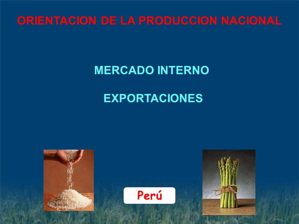 ORIENTACION DE LA PRODUCCION NACIONAL