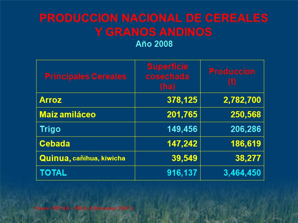 PRODUCCION NACIONAL DE CEREALES Superficie cosechada (ha)