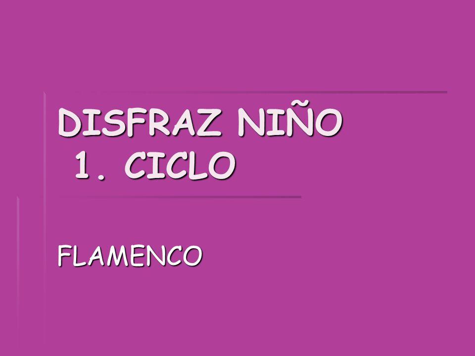 DISFRAZ NIÑO 1. CICLO FLAMENCO