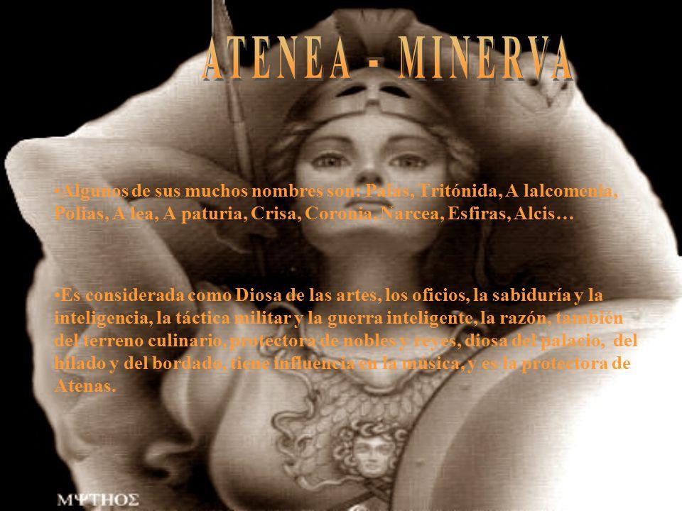 ATENEA - MINERVA Algunos de sus muchos nombres son: Palas, Tritónida, A lalcomenia, Polias, A lea, A paturia, Crisa, Coronia, Narcea, Esfiras, Alcis…