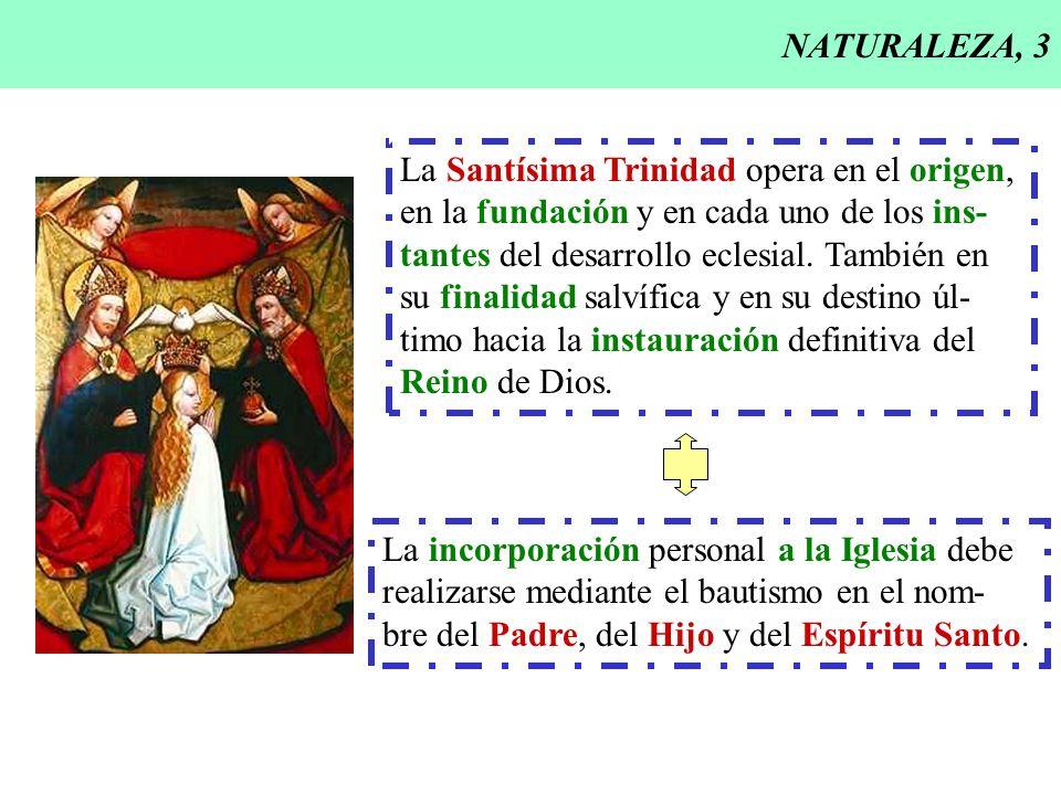 NATURALEZA, 3 La Santísima Trinidad opera en el origen, en la fundación y en cada uno de los ins- tantes del desarrollo eclesial. También en.